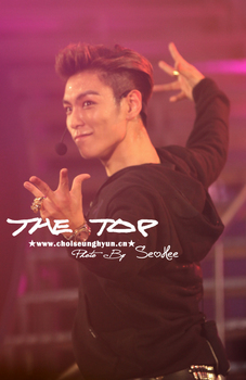 Big Bang TOP_002.jpg